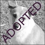 Marian - Adopted