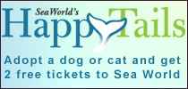 Sea World Happy Tails
