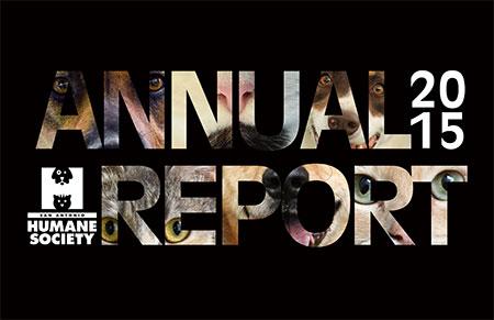2015AnnualReport 1