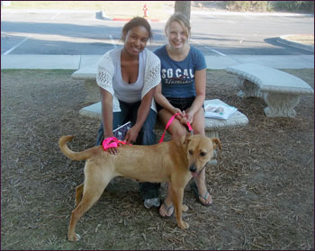 Sadie with her new family
