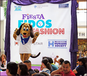Fiesta Fidos and Fashion