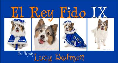 Lucy El Rey Fido IX
