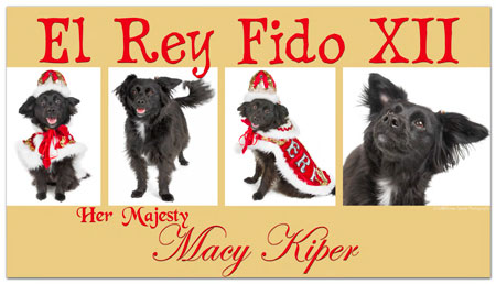 Macy ERF XII