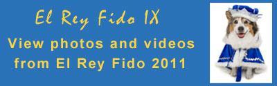 El Rey Fido 2011