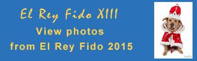 El Rey Fido XIII