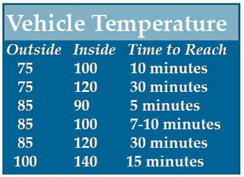 Car Temperatures Outside vs Inside